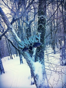Plattekill offers some serious Mountain Biking in the Summertime ~ the MTB trails make for AMAZING snowy glade runs #nojoke